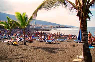 playa jardin palmboom
